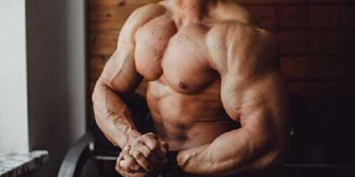 The Anabolic Evolution associated with Fresh Bodybuilding